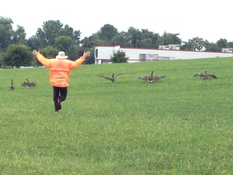 #35, (Jim flying with geese) Playing while waiting for repairs
